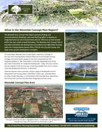 Westside Concept Plan Report